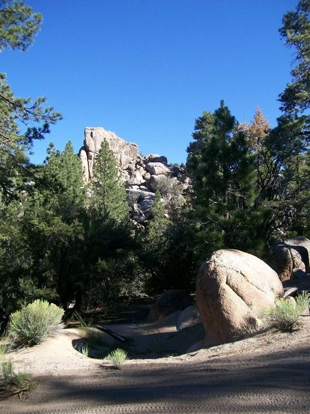Rock Climbing Photo: Wandering through the woods behind Holcomb Valley ...