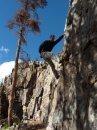 swan mountian bouldering summit colorado