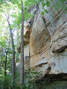 Rock Climbing Photo: Lowering from Mr. Mogley. Like most Meadow River r...