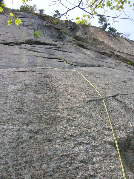 Bolts to the flake then trad gear and number 3 camalot take you up and left along the chossy undercling. I am not sure where the bolts were originally supposed to lead to, but the route was unfinished as far as I could tell. At the top of the undercling make a tenuous traverse left to the Uninvited tree.