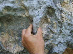 "Rock Climbing Photo: awesome little ""tufa"" pinch feature"
