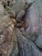 Rock Climbing Photo: The bulge shows he's recently eaten.