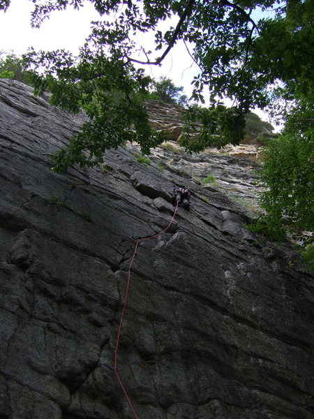 Rock Climbing Photo: Almost done sewing it up!