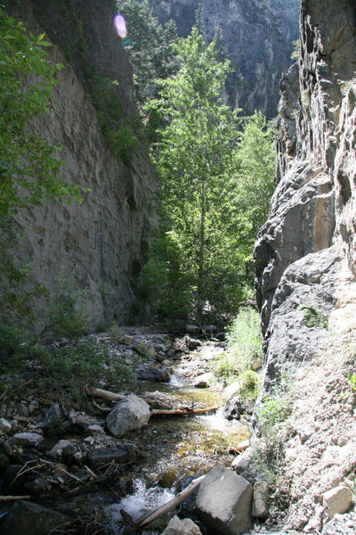 <em>Cougar Narrows</em> in mid-afternoon.