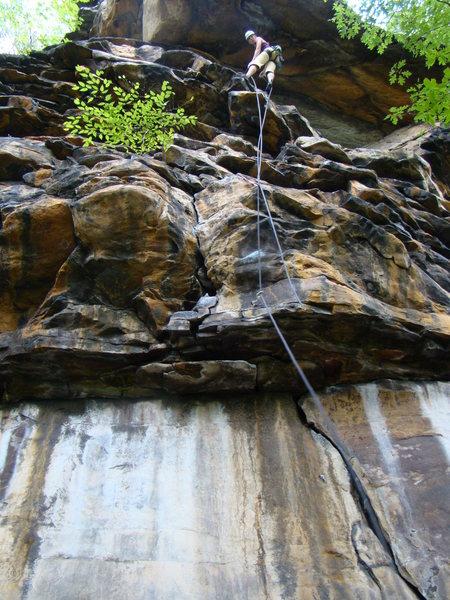 Rock Climbing Photo: Erica rapping down