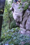 Rock Climbing Photo: The Cheek.