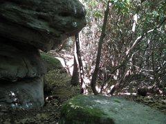 Rock Climbing Photo: the Blacklist boulder at nebo
