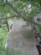 Rock Climbing Photo: South (front) side of Lost Arrow Spire. A route he...