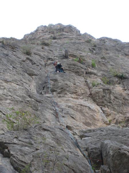 climbing snott girlz