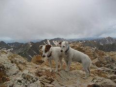Rock Climbing Photo: Summit of Mt Belford 14197'