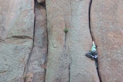 Rock Climbing Photo: Gobble Up