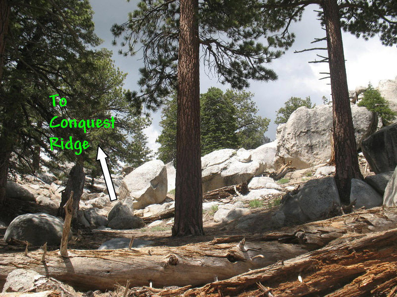 Rock Climbing Photo: Showing the way past the Green Tea Boulder to Conq...