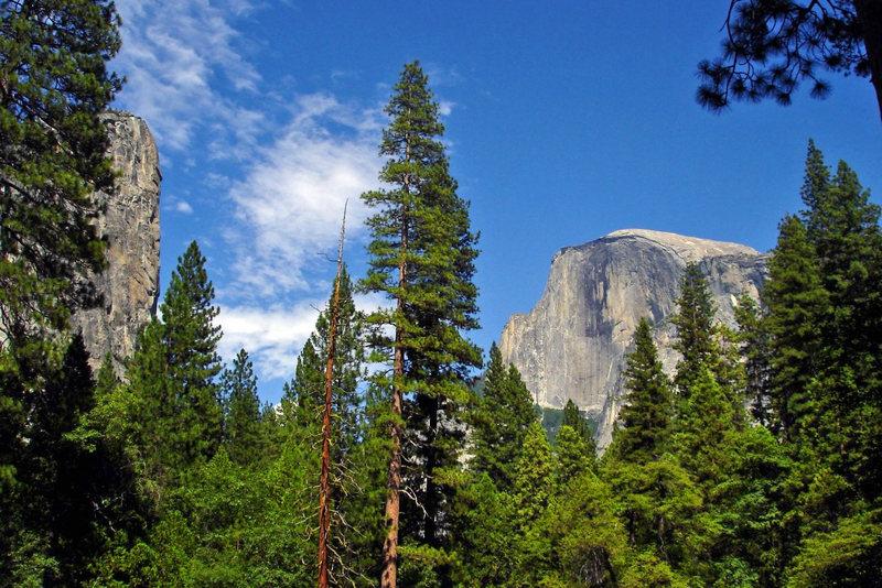Rock Climbing Photo: Washington Column and Half Dome