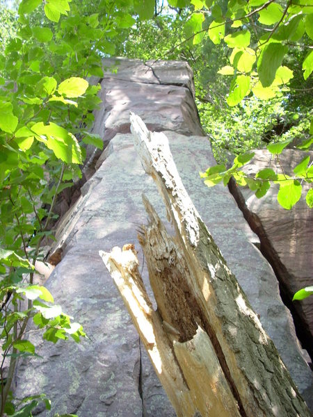 """Tower directly above White Wall and directly below """"Lost Arrow"""" on Poison Ivy Wall."""