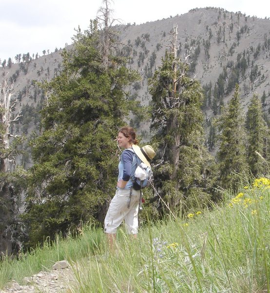 My very best Sin City Boot Camp partner, and good friend, Holly. We love talking about girly things when working out, like flowers, and men. (hee, hee, hee) ; )<br> <br> Mt. Charleston on a hot day.