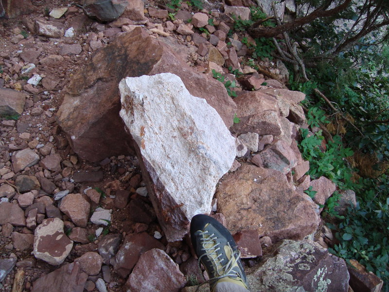 Rock Climbing Photo: One of the large pieces that hit the base of the c...