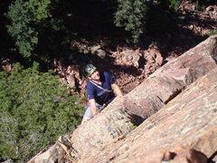 Rock Climbing Photo: Mark C. following P3.