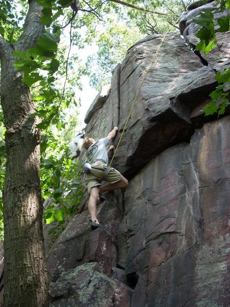 Rock Climbing Photo: Hmmmm...Which crack?!?!!?