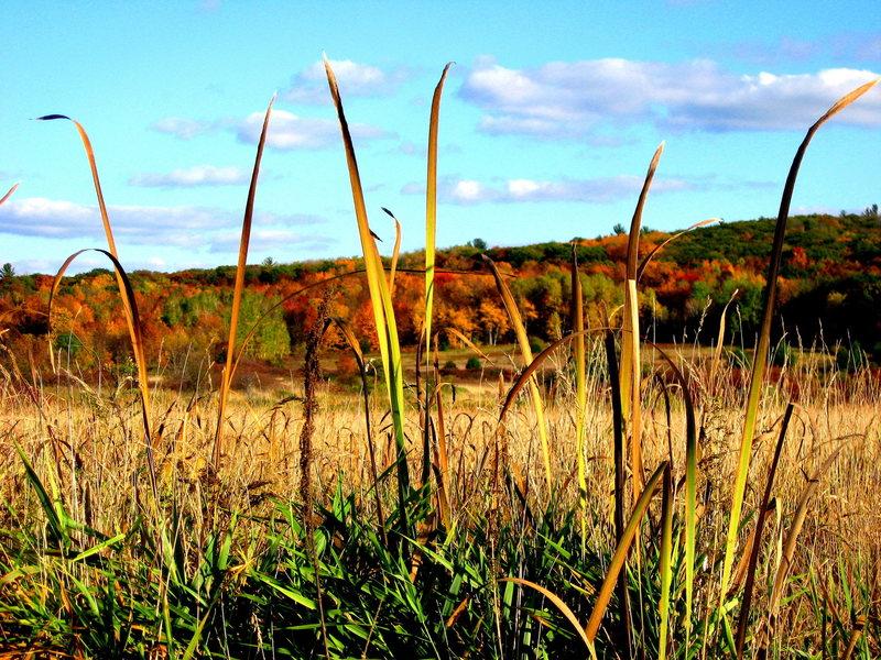 Fall hike at Devil's Lake