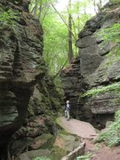 Rock Climbing Photo: Parfrey's Glen Natural Area, WI -- No climbing all...