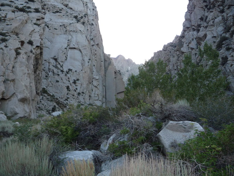 Pratt's crack and the canyon,