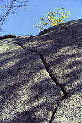 "Rock Climbing Photo: Start of ""the crack"". There's also a var..."