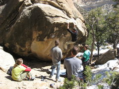 Rock Climbing Photo: Super fun dyno!