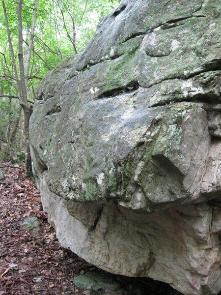 The Beyond Boulder