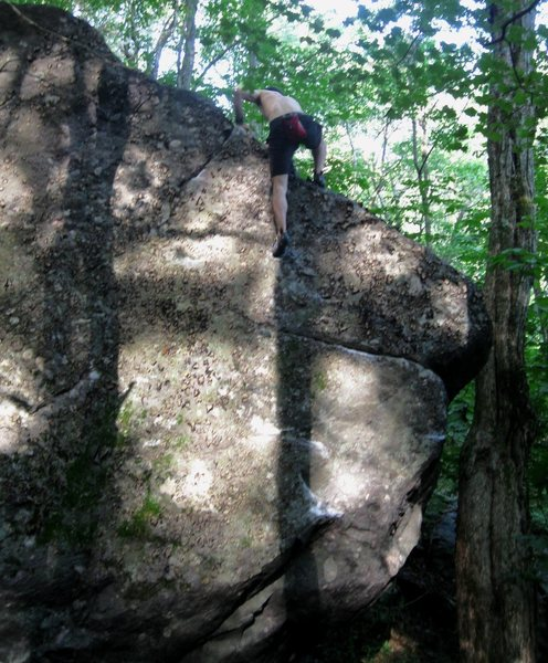 Aaron Parlier useing the bomber crack on top to top out with on &quot;badgermilk&quot; (V-0/1).Wild Wood, Grayson Highlands State Park.<br> <br>