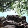 Scenic climbing.