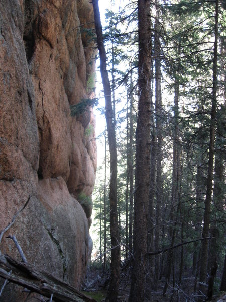 Secret wall with numerous possibilities for wicked hard routes.