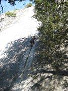 Rock Climbing Photo: Jamcrack!