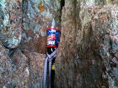 Rock Climbing Photo: Wild Pro!