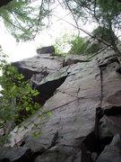 Rock Climbing Photo: Smooth Bush.