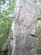 "Rock Climbing Photo: ""Koala Bear"" 5.11a is this arete."