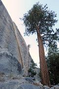 Rock Climbing Photo: Tobin's Dihedral