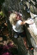 Rock Climbing Photo: Lily eyes the anchor...