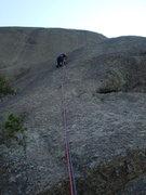Rock Climbing Photo: Lin warming up on Spree? (Tree fits description, o...