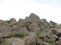 Rock Climbing Photo: They're big.