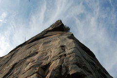 "Rock Climbing Photo: Have yourself some of this""Tall Cool One&quot..."