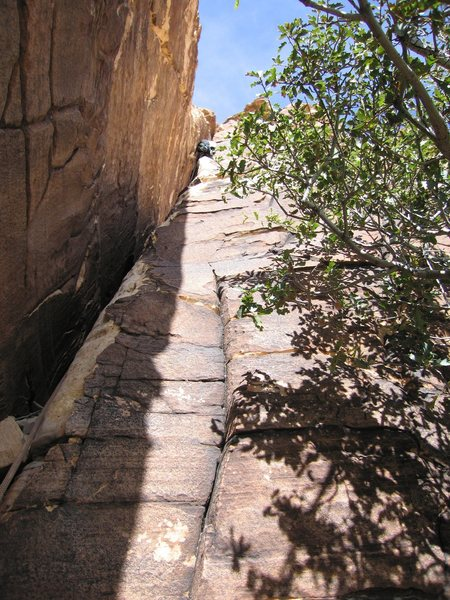 Having fun leading the wide crack on P-2 of Jubilant Song in Windy Canyon, Red Rock.