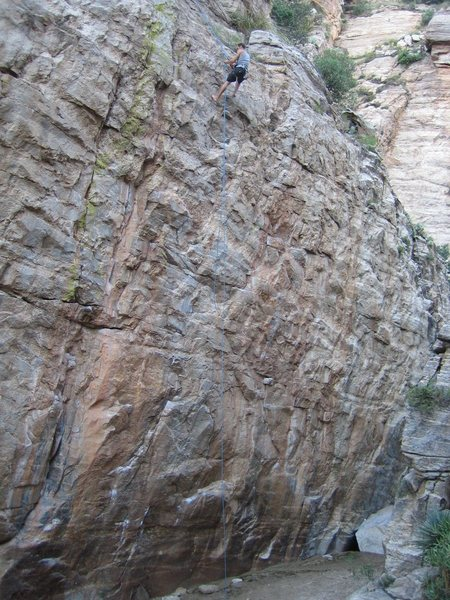 Rock Climbing Photo: Andrew Guice setting toprope.
