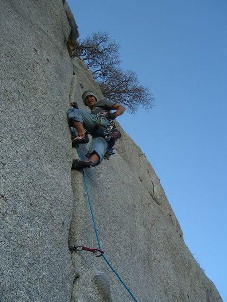 Rock Climbing Photo: Bushwhack Crack