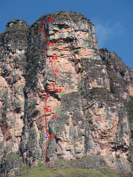 The line of Jardinero De Grandes Paredes is shown in green. Araguato King in Red. 'R' indicate bolted anchors, 'G' gear anchors (can be avoided by linking long pitches, but rope drag may be quite nasty!). <br> For the descent, rap line down to 'D', a bolted anchor from Jardineros.