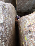 Rock Climbing Photo: Green Big bros near the top.