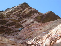 Rock Climbing Photo: Luis trying to find the way through a sea of overh...