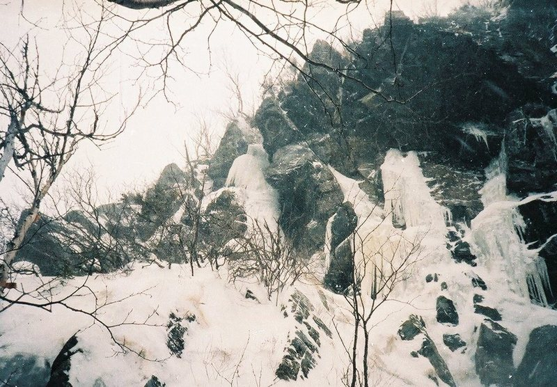 Sick Pup is in the center of this photograph. It ascends between the pinnacle wall at the top on the left and is started right of the short tree trunks below it. Vintage photograph, 1985