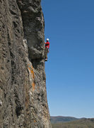 Rock Climbing Photo: Nick Goldsmith leading Celibacy 5.9+    For a comp...