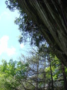 Rock Climbing Photo: it's steep