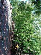 Rock Climbing Photo: Isaac Therneau on lead.  Fun climb.  Aug 09.